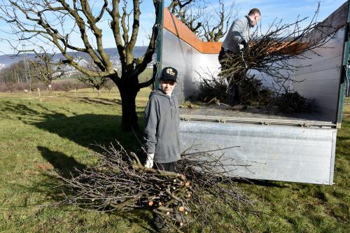 Baumschnitt der Bürgergemeinde holen